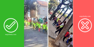 excursiones-escolares