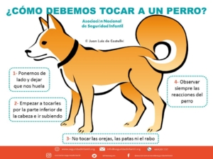 ¿Cómo debemos tocar a un perro?